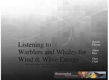 Listening to Warblers and Whales for Wind & Wave Energy - MREC