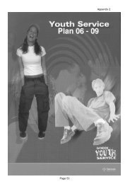 swindon youth plan 2006 - MOST.ie