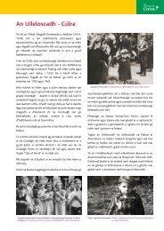 Crocus A3 posters Gaeilge - Holocaust Education Trust of Ireland