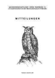 M I T T E I  LU N G E N - Paderborn.de