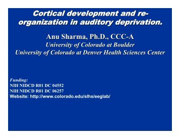 Cortical development and re- organization in auditory deprivation.