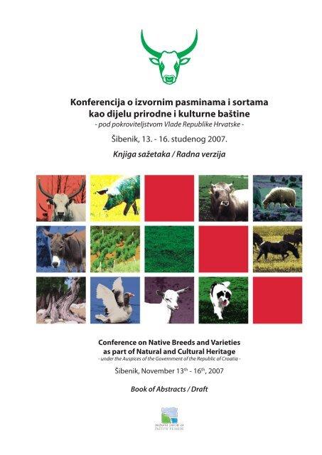us-afganistanska konferencija o poslovnom povezivanju
