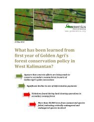 What has been learned from first year of Golden Agri's forest ...