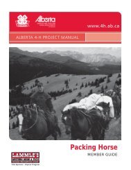 Packing Horse - Agriculture and Rural Development