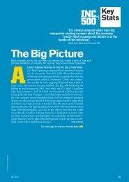 The Big Picture - Inc.com