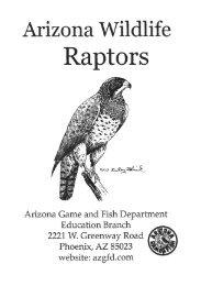 Arizona Wildlife: Raptors Book - Arizona Game and Fish Department