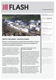 der Projektbeschrieb (PDF) - IE Engineering Group AG