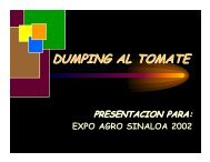 DUMPING AL TOMATE