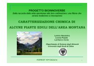 Caratterizzazione chimica di alcune piante eduli dell'area montana