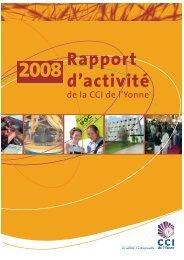 2008 Rapport d'activité - (CCI) de l'Yonne