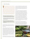 Climate Change in the Champlain Basin - The Nature Conservancy - Page 4