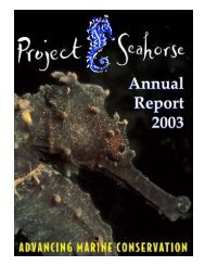 Seahorse Research - About the Philippines