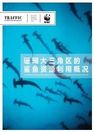 珊瑚大三角区的鲨鱼资源利用概况 - WWF