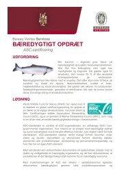 BÆREDYGTIGT OPDRÆT - Bureau Veritas
