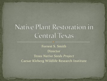 Native Plant Restoration in Central Texas - Caesar Kleberg Wildlife ...