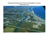 Workshop Overview - Carey.pdf - ICLEI Local Governments for ...