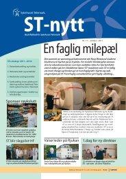 ST-Nytt nr. 17, 2011 - Sykehuset Telemark