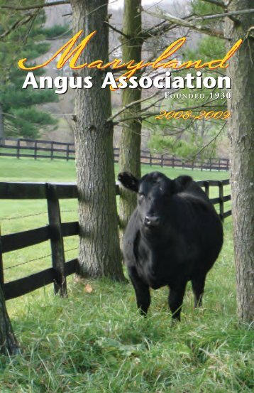 Angus Association Angus Association - Breeding Cattle Page
