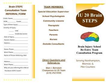 Brain STEPS Brochure - Colonial Intermediate Unit 20