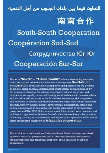 cooperation - Academy - United Nations Development Programme