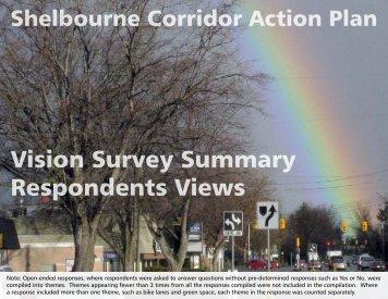 Vision Survey Results Summary