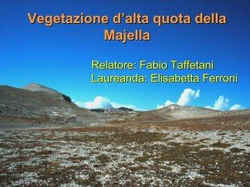 Vegetazione d'alta quota della Majella - Museobotanico.univpm.it