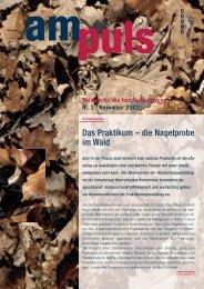 Nr. 3 - 11/2007 - Codoc