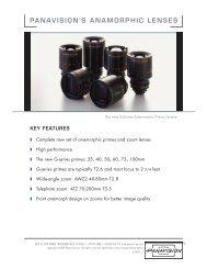 panavision's anamorphic lenses