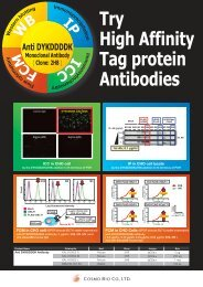 Try High Affinity Tag protein Antibodies
