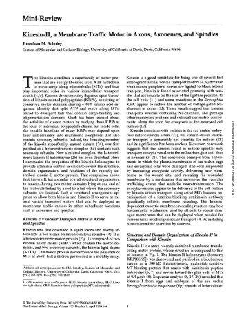 Mini-Review Kinesin-II, a Membrane Traffic Motor in Axons ...