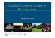 Quantitative, Multiplex Detection of Micro organisms