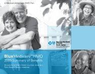 BlueMedicare HMO