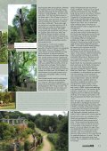 HAMPSTEAD HEATH - Forestry Journal - Page 2