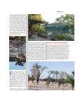 Im Norden Namibias - Seite 2