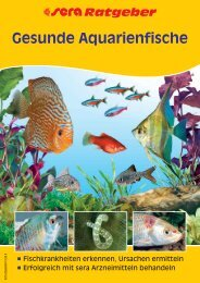 Gesunde Aquarienfische - Zooplus