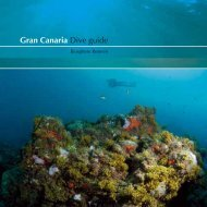 Gran Canaria Dive guide - Cabildo de Gran Canaria