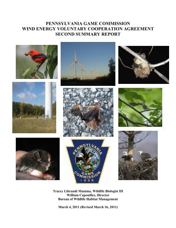 PA-Voluntary-bird-bat-report-2.pdf - Wind Watch