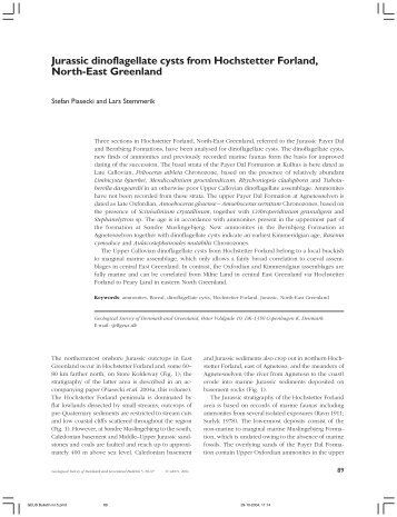 Geological Survey of Denmark and Greenland Bulletin 6, 89-97