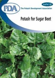 download as pdf (150 kb) - Potash Development Association