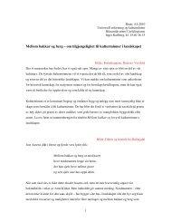 Mellom bakkar og berg – om tilgjengelighet til kulturminner i ...