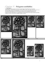 Chapitre V Polygones semblables