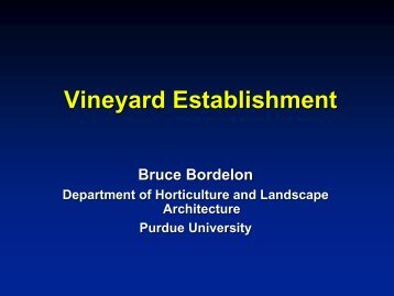 Vineyard Establishment - Viticulture Iowa State University