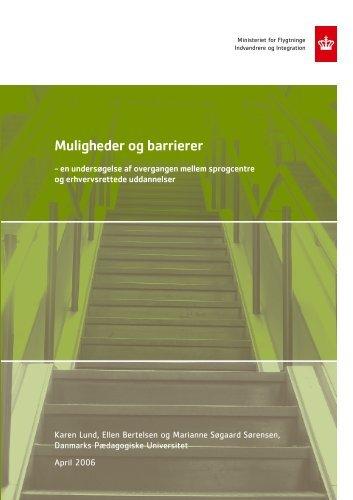 Muligheder og barrierer - Ny i Danmark