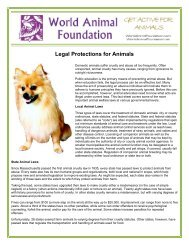 Legal Protections for Animals - World Animal Foundation