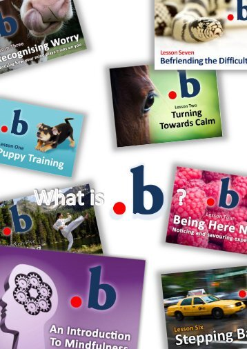 What is B? - Mindfulness in schools projects - the Enhancement ...
