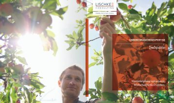 Industrie - Lischke Consulting GmbH