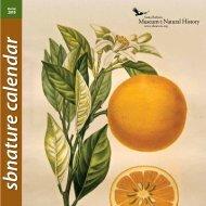 sbnature calendar - Santa Barbara Museum of Natural History