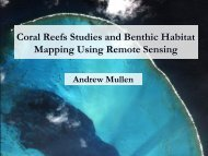 Coral Reefs Studies and Benthic Habitat Mapping Using Remote ...