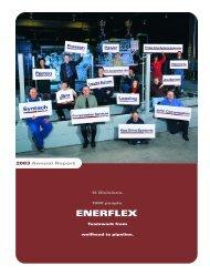 2003 Annual Report - Enerflex