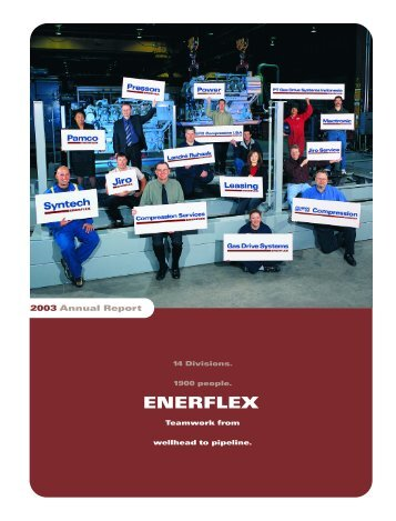 2003 Annual Report - Enerflex